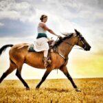 Mộng thấy ngựa là điềm lành hay dữ, đánh đề con gì