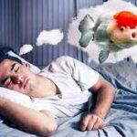 Giấc mơ thấy cá đánh số gì? Nó là điềm báo tốt hay xấu?