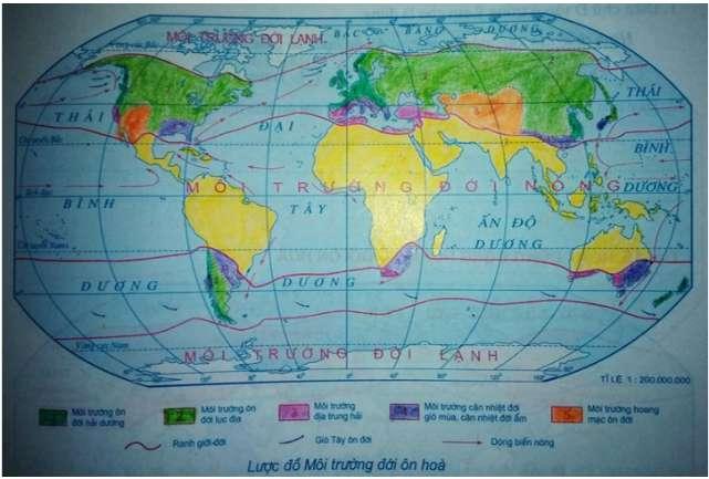 tập bản đồ