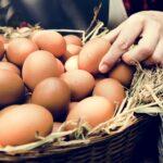 Mơ thấy trứng đánh con gì? Điềm báo giấc mơ